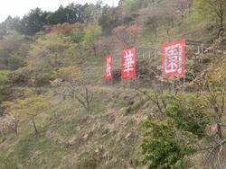 桜華園看板