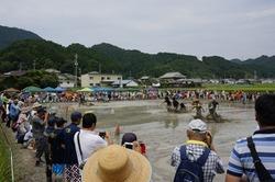 泥んこ祭り1