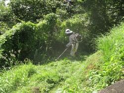 2_彩りの森の草刈作業②