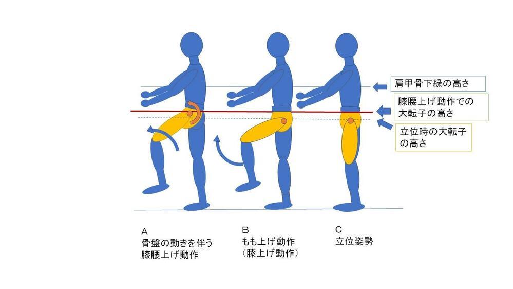 膝腰上げの矢印図解