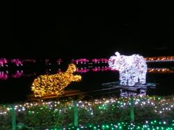 !!クリスマスの東武動物園 2011 390.JPG
