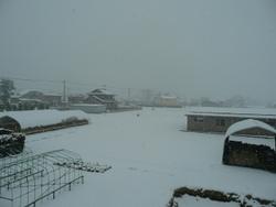 雪と社外ステップ!! 004.JPG