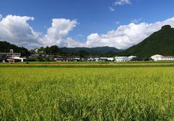 波賀城望む実りの集落