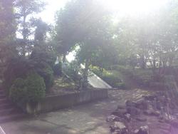 20120819_081342.jpg