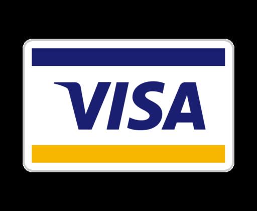 1490135017-visa_82256