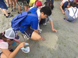 砂をプレゼント