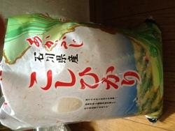 isikawa_a.JPG