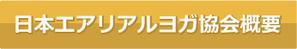 日本エアリアルヨガ協会概要