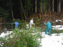 2.竹の処理②