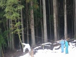 1.竹の処理①