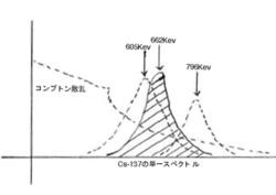 Pro_2.jpg