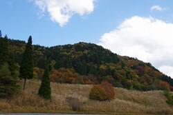 秋のちくさ高原