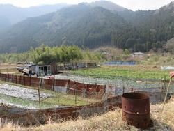 中州の農園
