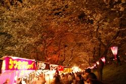 花祭り!! 022.JPG