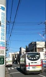 Tamachan@20131221.jpg