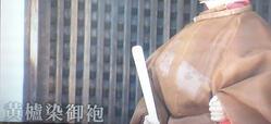 黄蘆染  (9)