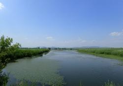 渡良瀬遊水池d