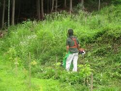 1.彩りの森の草刈り