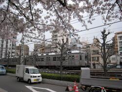 ★東急クラシック桜と池上・多摩川線 024.JPG