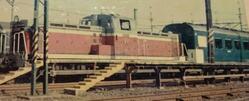 DSC_1177