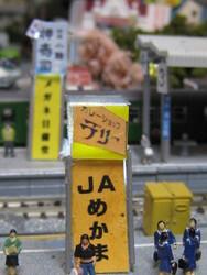 2011.4.8 133.JPG