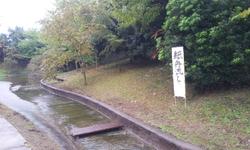 20121028_124427.jpg