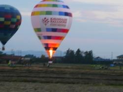 2011 紅葉!! 215.JPG