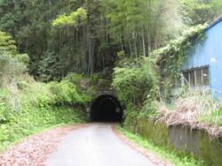 厳井寺隧道  IMG_3311