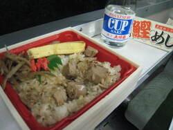 2008.7Shikoku(Kiha) 181 (2).JPG
