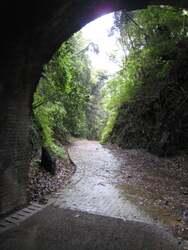 宇津の谷明治隧道  IMG_3298