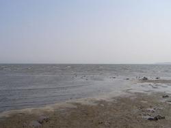 葛西臨海公園5-31c
