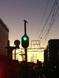 Shimomaruko@20150202 (1)