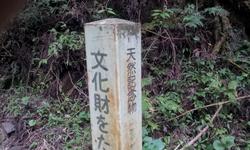 20121020_143233.jpg