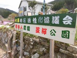 大茅芝桜公園