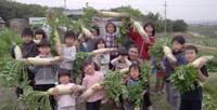 27農業体験