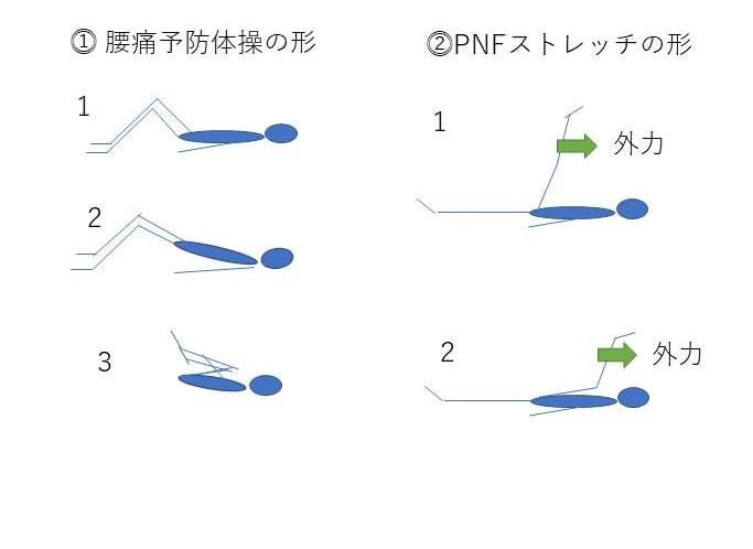 JPEG腰痛とPNFポージングの比較図解PNFベッド腰痛体操 (2)