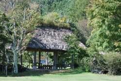 西湖・野鳥の公園2