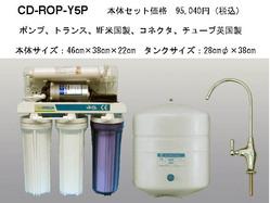 Y5P.jpg
