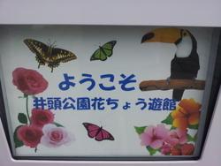 20120908_130119.jpg