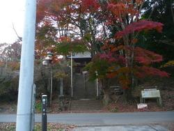 2011 紅葉!! 169.JPG