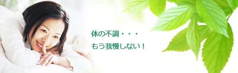 top-ソフト生体