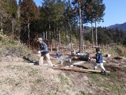 2 木材搬出