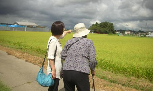 ウメ 娘 散歩1.JPG