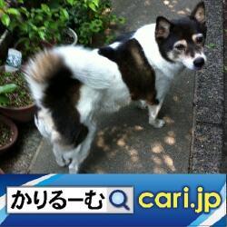 18_dog200127w500x500