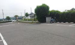 20130618_084510.jpg