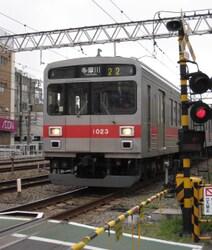 ★1023桜と池上・多摩川線 030.JPG