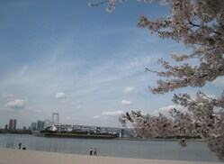 ★★Odaiba for Air Doll 2014 042.JPG