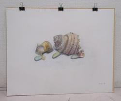 MAKIKO 海の詩(うた) F6鉛筆、色鉛筆