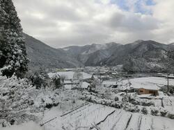 安賀雪景色