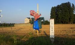 20130921_164225.jpg